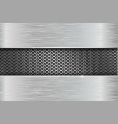 Iron brushed metal texture with metal perforation vector