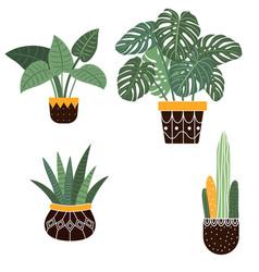 large hand drawn watercolor tropical plants set vector image