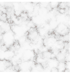 Marble realistic texture white marble rock vector