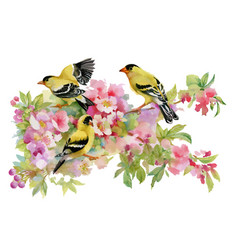 watercolor beautiful birds sitting on blooming vector image