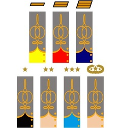 Sleeve and collar insignia of officers csa vector