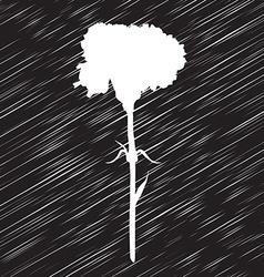 carnation stencil vector image vector image
