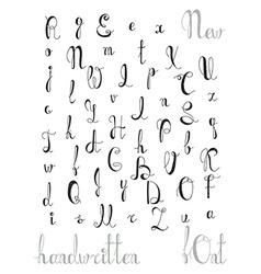 Hand-written alphabet Calligraphic font Letters vector image