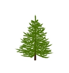 Green fir tree Christmas symbol New Year On a vector image vector image
