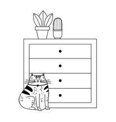cat sitting drawers with potted plants isolated vector image