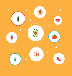 Flat icons melon slice hot pepper litchi and vector