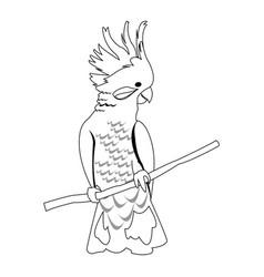 cockatoo bird icon vector image