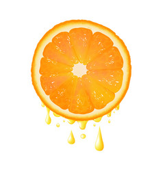 orange slice with juice drops vector image