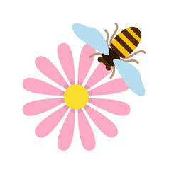 pink field flower with bee top view flat isolated vector image