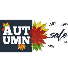 Sale banner with colorful seasonal fall leaves vector