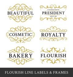 set flourish calligraphy frames design vector image