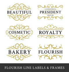 Set of flourish calligraphy frames design vector