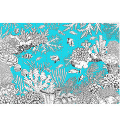 underwater landscape monochrome corals and fishes vector image