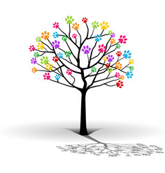 silhouette of the tree-paw print vector image vector image