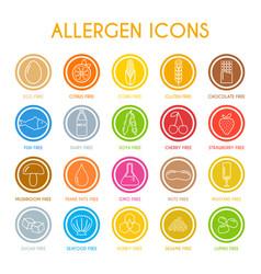 Allergen7 vector