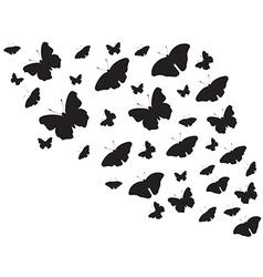 Butterfies flying around vector