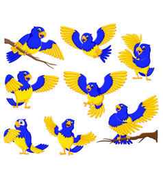 Dashing parrots with gold accent vector
