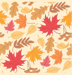 Fallling leaves pattern vector