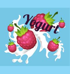Fruit yogurt tasty milk with fresh raspberries vector