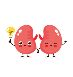 Happy cute kidneys with lightbulb character vector