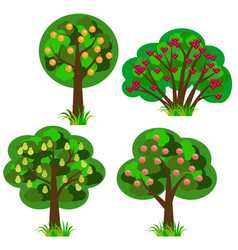 Set fruit trees isolated elements to design vector