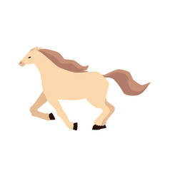 Thoroughbred beautiful horse galloping a vector