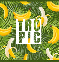 Tropical design with banana and palm leaves vector