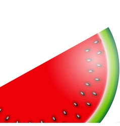 Watermelon icon vector