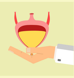 doctors hand hold human bladder health care vector image vector image