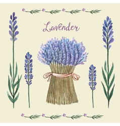 Lavender Background Watercolor vector image
