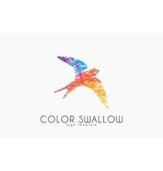 Swallow logo Color swallow logo design Bird logo vector image vector image