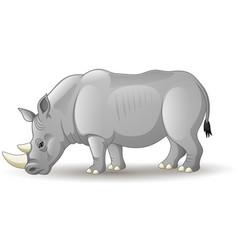 Cartoon african rhinoceros isolated on white backg vector