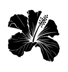 hawaiian hibiscus laser cut silhouette vector image