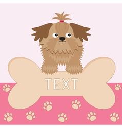 Little glamour tan shih tzu dog and big bone card vector