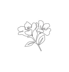 Single one line drawing beauty fresh anemone vector