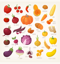 Variety of yellow and red fruit and vegetables vector
