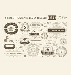 Vintage typographic design elements set vector