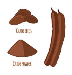 Carob pods beans powder superfood vegetarian vector