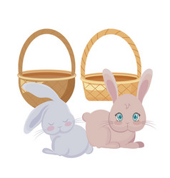 Cute rabbits in baskets wicker vector