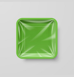 Empty green plastic food square container on gray vector