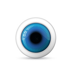 glossy 3d eye vector image