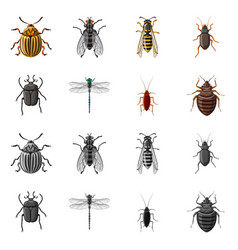 Insect and fly symbol set vector