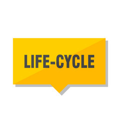 Life-cycle price tag vector