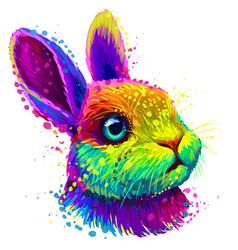little rabbit color abstract portrait vector image