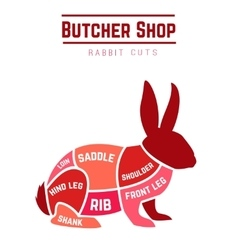 Rabbit cuts diagram for Butcher shop vector image