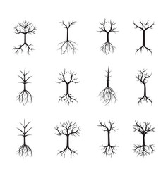 Set naked black trees and roots vector