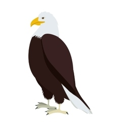 Silhouette eagle in standing position vector
