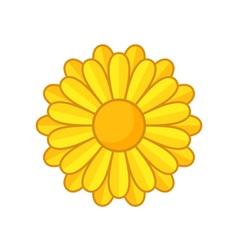 Yellow Flower vector