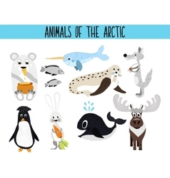 Set of cute cartoon animals and birds of the vector