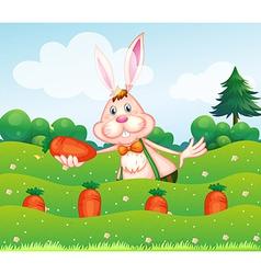 A rabbit holding a carrot at the garden vector image vector image